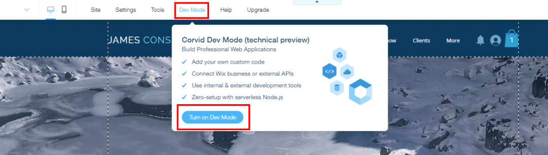 Enable Dev Mode