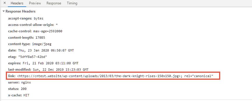 Canonical URL header