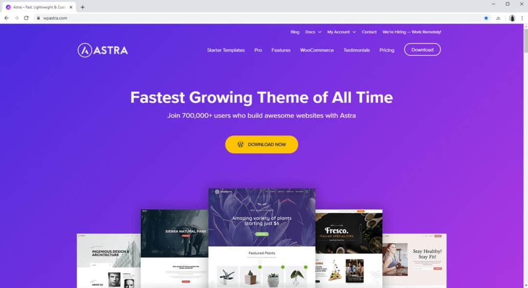 Astra Pro WooCommerce Theme