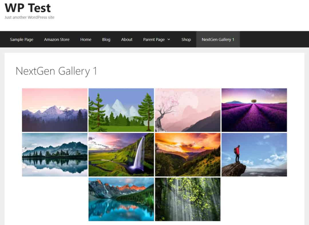 basic gallery using nextgen