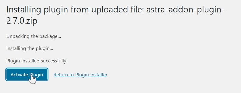 activating astra pro addon plugin