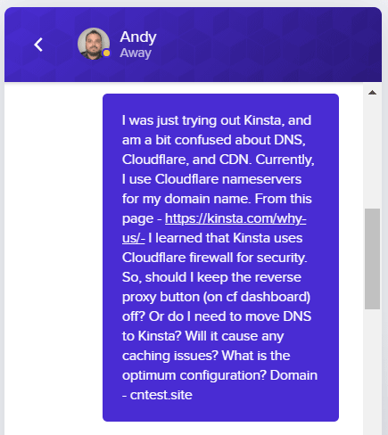 kinsta dns chat query